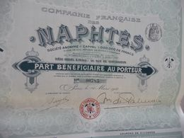 Action Part De Fondateur Au Porteur Compagnie Française Des Naphtes - Non Classés