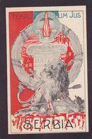 CPA SERBIE Serbia Militaire Militaria Guerre Anti Kaiser Germany Non Circulé Patriotique - Serbia