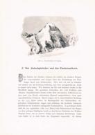 290 B  E.T.Compton Finsteraarhorn Brig Grindelwald Artikel Mit 5 Bildern 1896 !! - Suiza