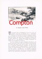 293 E.T.Compton Glarus Säntis Tödi Sankt Gallen Artikel Mit 6 Bildern 1896 !! - Suiza