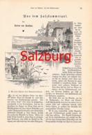 308 Anton Von Ruthner Salzkammergut Hallstadt Gosau Artikel Von 1883 !! - Austria