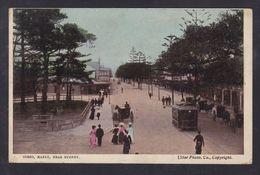 Australia - Corso, Manly Near Sydney - Coloured View Early 1900's - Sydney