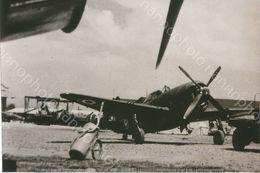 PHOTO AVION         CURTISS SB2C HELLDRIVER     RETIRAGE REPRINT - Aviation