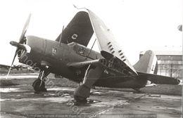 PHOTO AVION          CURTISS SB2C-5  Helldiver      RETIRAGE REPRINT - Aviation