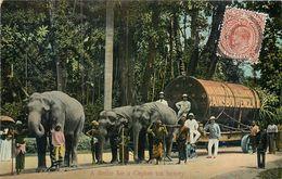 CPA Asie Sri Lanka (Ceylon) A Boiler For A Ceylon Tea Factory Marshall Sons Gainsboro England Elephant Ceylan - Sri Lanka (Ceylon)
