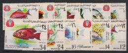Yemen - 1967 - N°Yv. 239 + PA 64 - Poissons / Fishes - 13v - Neuf Luxe ** / MNH / Postfrisch - Vissen