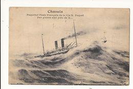 Bateaux Navires Paquebot Poste Français De La Cie N Paquet Par Grosse Mer Près De X... Ligue Maritime Française - Steamers