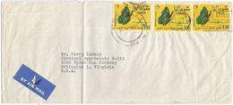 / Butterflies Of Somalia Issue 60's : C90 X3pcs Simple Franking Airmail CV X USA Diplomatic Pouch PMK Washington 19dec63 - Papillons