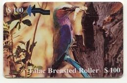 ZIMBABWE REF MV CARDS ZIM-34 100$ Lila Breasted Roller - Zimbabwe