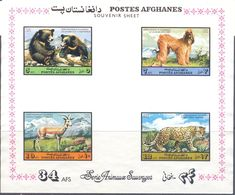 1973. Afghanistan, Dog, Animals, S/s, Mint/* - Afghanistan