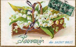 SAINT-BRIS - Souvenir - Carte Gaufrée - Saint Bris Le Vineux