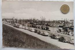 Büsum, Am Kutterhafen, Alte Busse Und Autos, VW Käfer, 1965 - Büsum