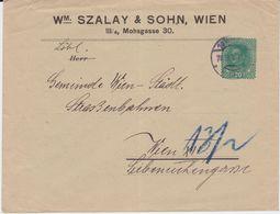 Österreich Austria Privatganzsache PU 20 H Szalay + Sohn Wien 1918 - Interi Postali