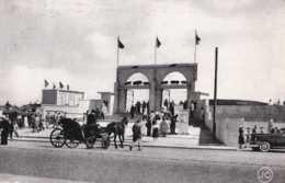 Oostende - Ostende - Entrée De L'Hippodrome Wellington - Circulé - Cachet SABENA - Animée - Voiture Attelée - TBE - Oostende