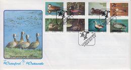 TRANSKEY, SOUTH AFRIKA 1992 Birds Ducks FDC Yv. 287-294 - África Del Sur (1961-...)