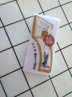 115B Pin's Pins / Beau Et Rare / THEME : SPORTS / Céramique Ou Porcelaine Limoges BASKET-BALL HANDISPORT BERCK - Baloncesto