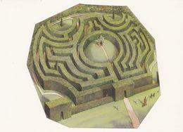 Postcard - Art -  Angela Barrett (1983) - The Maze At Somerleyton, Lowestoft (Designed By William Nesfield (1846) - VG - Cartes Postales