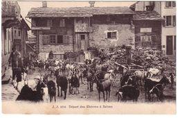 SALVAN -  Départ Des Chèvres - VS Valais