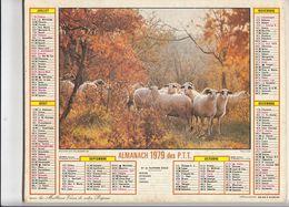 Almanach Des P.T.T. 1979. Moutons Sur Les Causses ( 46 ) - Calendars