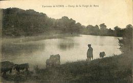 028 264 - CPA - France (44) Loire Atlantique - Génis - Etang De La Forge De Bord - Moisdon La Riviere