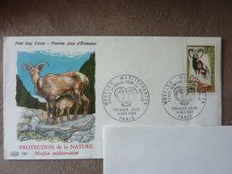 1969  Protection De La Nature  Mouflon Méditerranéen  Y&T= 1613   (adresse Cachée)  Parfait état - 1960-1969