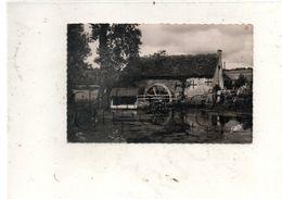 Bonnetable (72) : La Scierie Du Vieux Moulin En 1950 PF . - Bonnetable