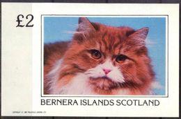 {B096} BERNERA SCOTLAND Cats I S/S 2,00 £ MNH** Local Issue !!! - Emissions Locales