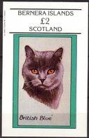 {B097} BERNERA SCOTLAND Cats II British Blue S/S 2,00 £ MNH** Local Issue !!! - Emissions Locales
