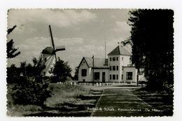 D299 - Borkel & Schaft Kousenfabriek De Meteor En MOLEN - Molen - Moulin - Mill - Mühle - Pays-Bas