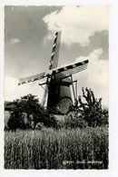 D300 - Gemert Oudestraat MOLEN - Molen - Moulin - Mill - Mühle - Gemert