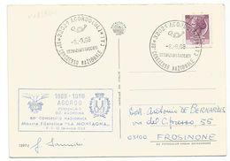 XW 2390 Agordo (Belluno) - 2 Mostra Filatelica Agordina 1968 - 80° Congresso Nazionale CAI - Annullo Commemorativo - Andere Steden