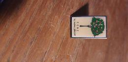Pins Ccas - EDF GDF
