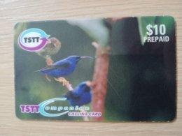 TRINIDAD & TOBAGO    $10,-  NO T&T-P2  TSTT  BIRD OF SANCTUARY    ** 2197** - Trinité & Tobago