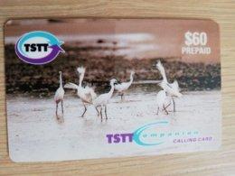 TRINIDAD & TOBAGO    $60,-  NO T&T-P4  TSTT  DANCING EGRETS    ** 2200** - Trinité & Tobago