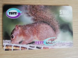 TRINIDAD & TOBAGO    $100,-  NO T&T-P5  TSTT  HUNGRY LITTLE SQUIRREL    ** 2201** - Trinité & Tobago