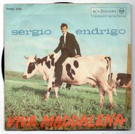 "Sergio Endrigo  (anni 70)  ""Viva Maddalena"" - Vinyl Records"
