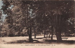 BACCARAT Un Coin Du Parc 4(scan Recto-verso) MA1991 - Baccarat
