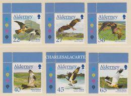ALDERNEY AURIGNY  2002 MIGRATING BIRDS RAPTORS  SG  185-190  U.M.  N.S.C. - Alderney