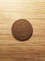 COIN MONNAIE ETATS UNIS USA ONE CENT INDIAN HEAD 1878 QUALITE PATINE RELIEF - Émissions Fédérales
