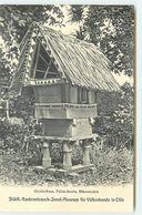 MICRONESIE - PALAU - Geisterhaus, Pelau-Inselm - Micronésie