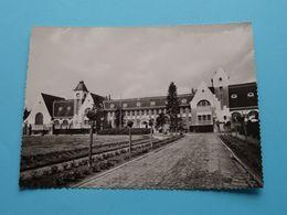 St. Antonius, Bethanie Huis ( Anthonissen-Jules ) Anno 19?? ( Zie / Voir Photo) ! - Brecht