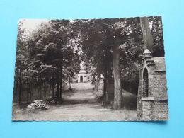 H. KRUISBERG ( J. Prevot ) Anno 19?? ( Zie / Voir Photo) ! - Herentals