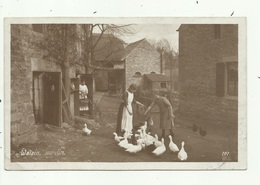 Dinant- Anseremme-  Walzin - La Ferme Moulin- Fotokaart  ( 2 Scans) ) - Dinant