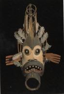 American Indian Mask , Nrgakfok (Cold Weather Spirit) , Indian Museum , Washington , D.C. , 1997 - Native Americans