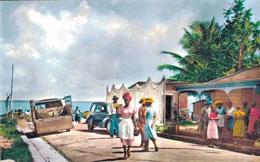 GUADELOUPE - SAINTE ROSE / SCENE DU BORD DE MER - Guadeloupe