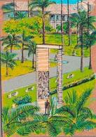 GUYANE - CAYENNE / CARTE POSTALE EN LIEGE - Cayenne