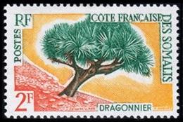 Somali Coast, French, 1962, Definitive, Dragon Tree, MNH, Michel 336 - French Somali Coast (1894-1967)