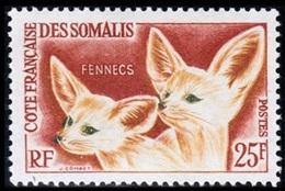 Somali Coast, French, 1962, Definitive, Fox, Fennec, MNH, Michel 339 - French Somali Coast (1894-1967)