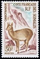 Somali Coast, French, 1962, Definitive, Buck, MNH, Michel 341 - French Somali Coast (1894-1967)