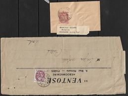 Type BLANC 2c Rouge Brun N° 108 Sur Bande Journal Et Entier BJ108 - 1900-29 Blanc